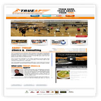 sports specific web design chantilly va