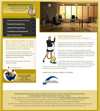 Ashburn Web Design Cleaning Services